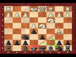 Сицилиа́нская защи́та, вариант Найдорфа. Шахматный видео урок (Sicilian Defence - Najdorf, English Attack)